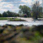 10-Annebeth Reesink_Aan de rivier