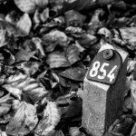 01-Breng de dood in beeld - Irma Marneth