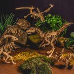 06-Joop-speelgoeddinosauriers dec. 20 (5)
