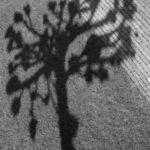 07-Joan Nienhuis Abstract 4.0