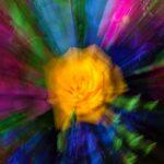 03-marijke-kleurexplosie